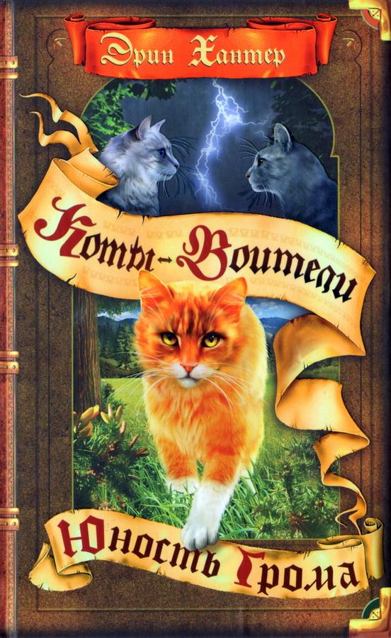 Коты воители скачать книгу восхождение грома